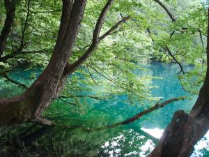 озеро-Чирик-Кёл-Кабардино-Балкария
